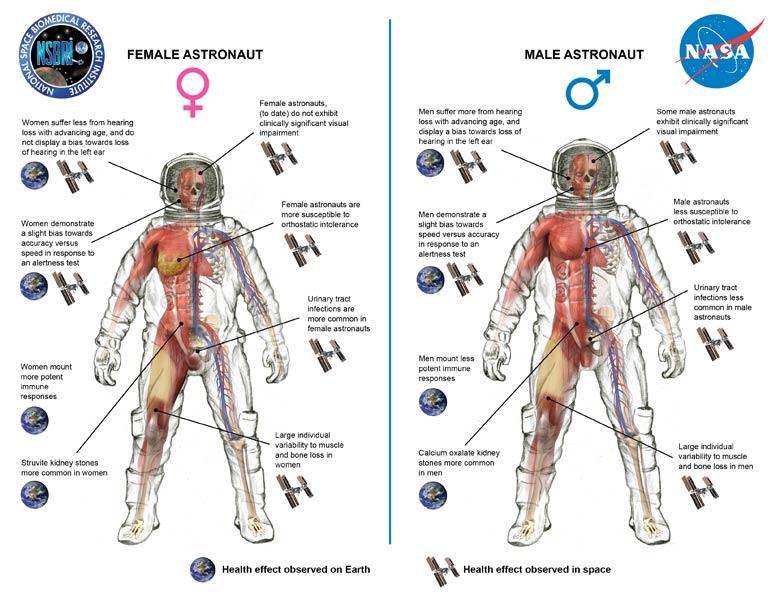 Uzayda Kadın ve Erkek